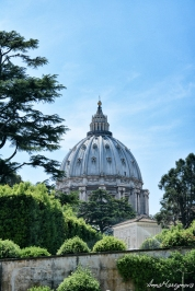 The tower of Basilica di San Pietro, seen from all over Rome